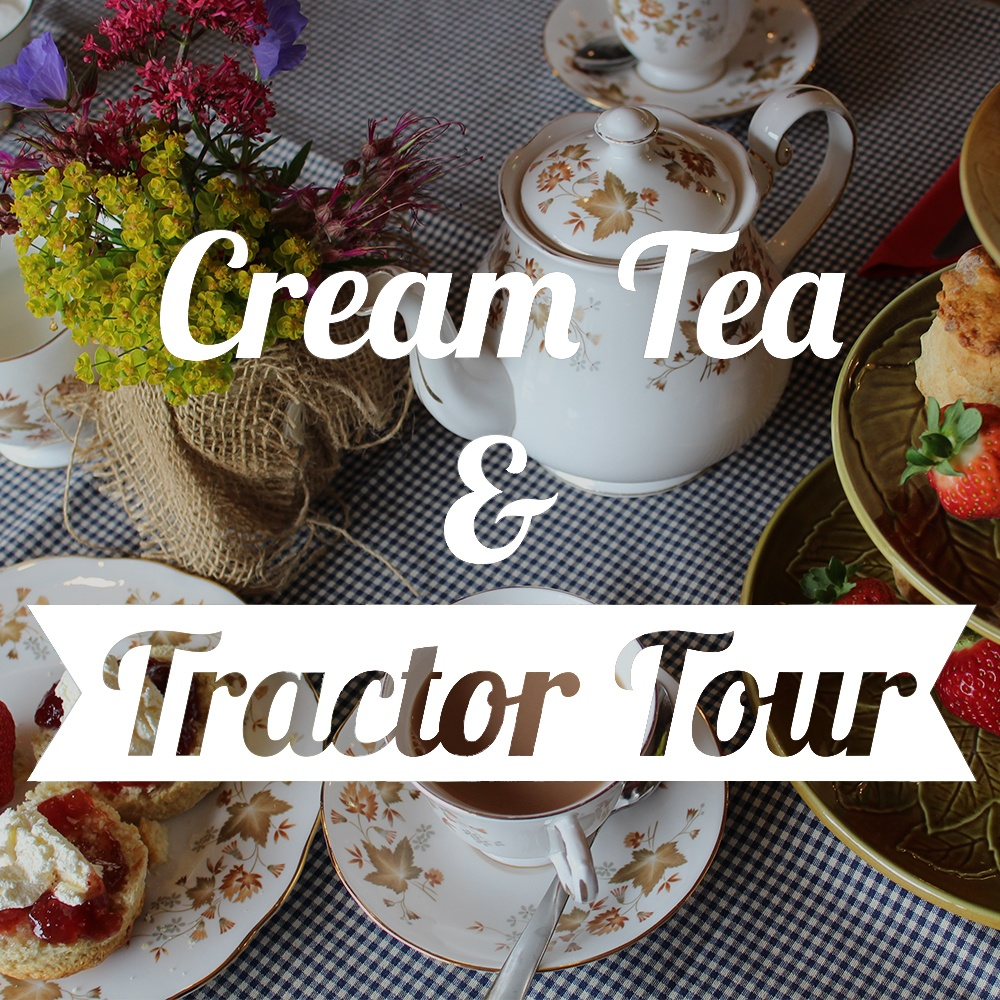 Cream Tea and Tractor Tour