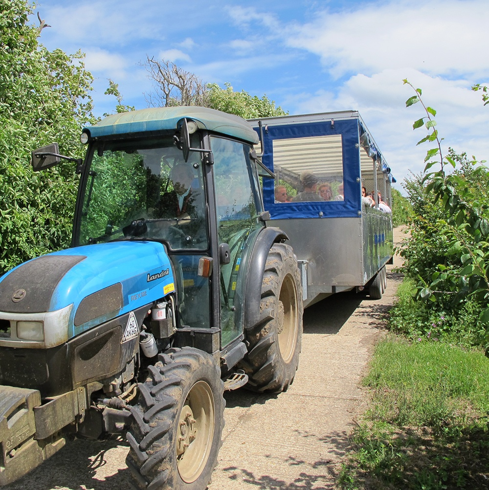 Tractor Tour at Brogdale Farm