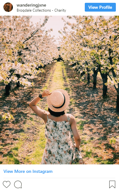 Kent's most Instagrammable spring spots
