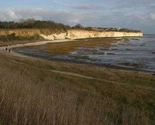North side of Pegwell Bay